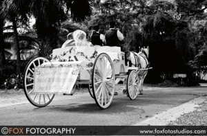 Carriage in Your Wedding