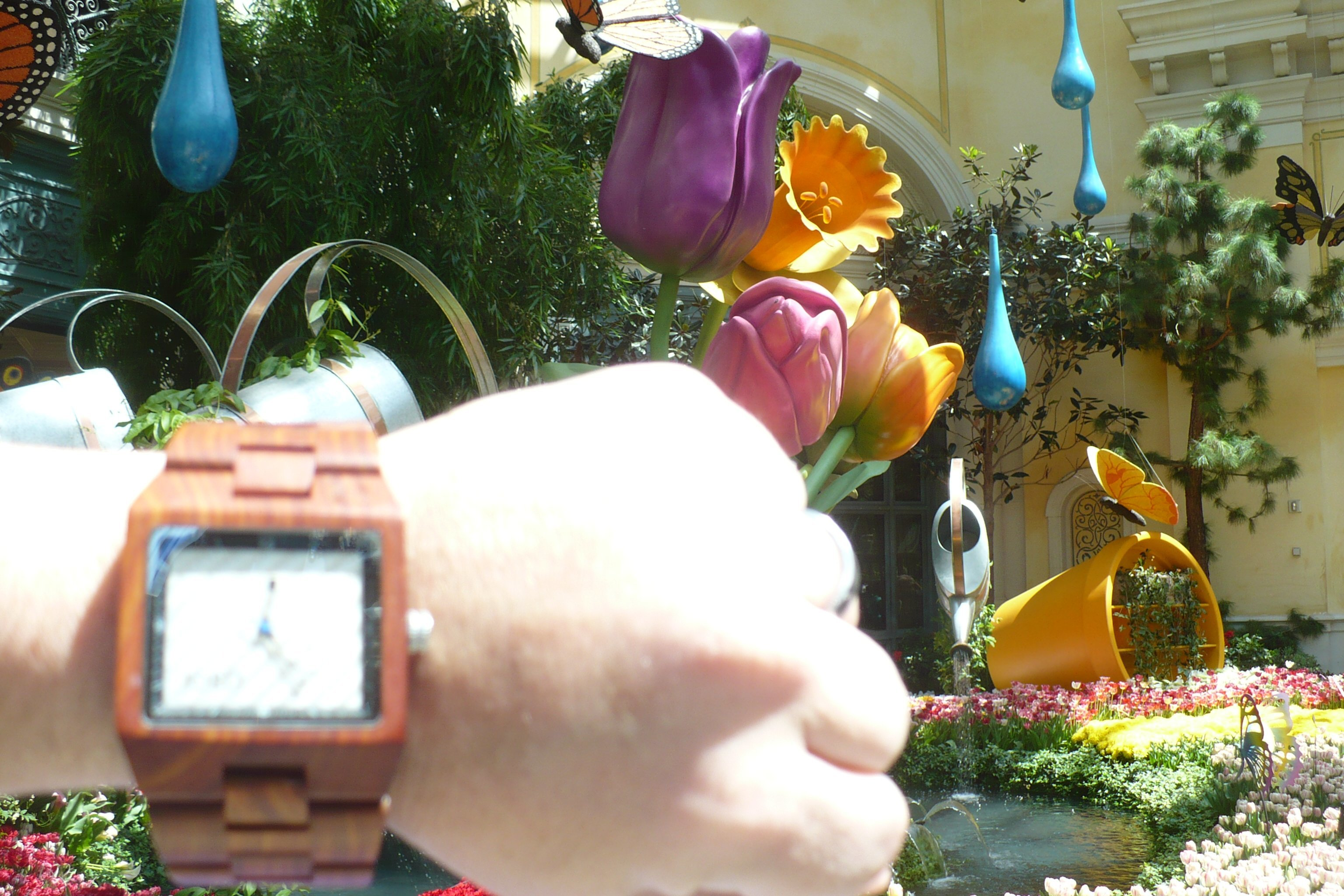 jord wood watch at bellagio conservatory