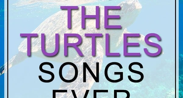 the turtles songs